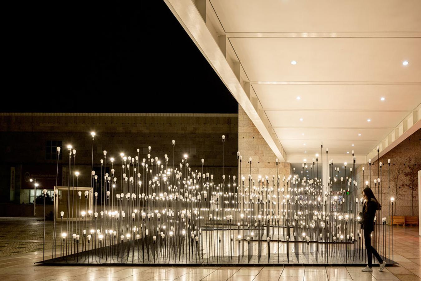 LEDscape 6